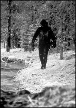 bigfoot3